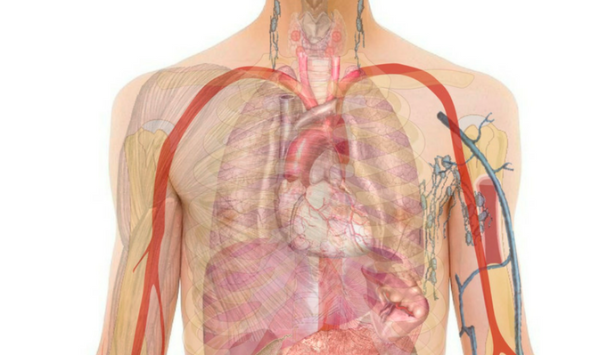 The Future of Wearables: Sensors That Detect Heart Failures Before They Occur