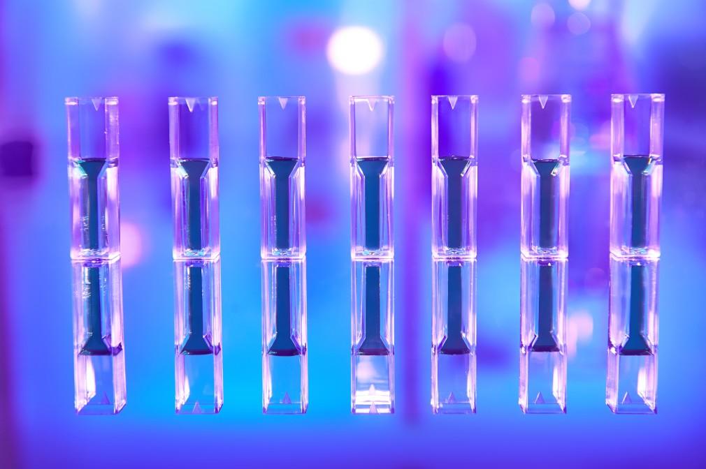 Wearables in Pharma